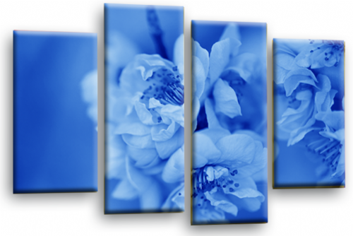Floral Flower Wall Art Picture Blue Grey Spring Blossom